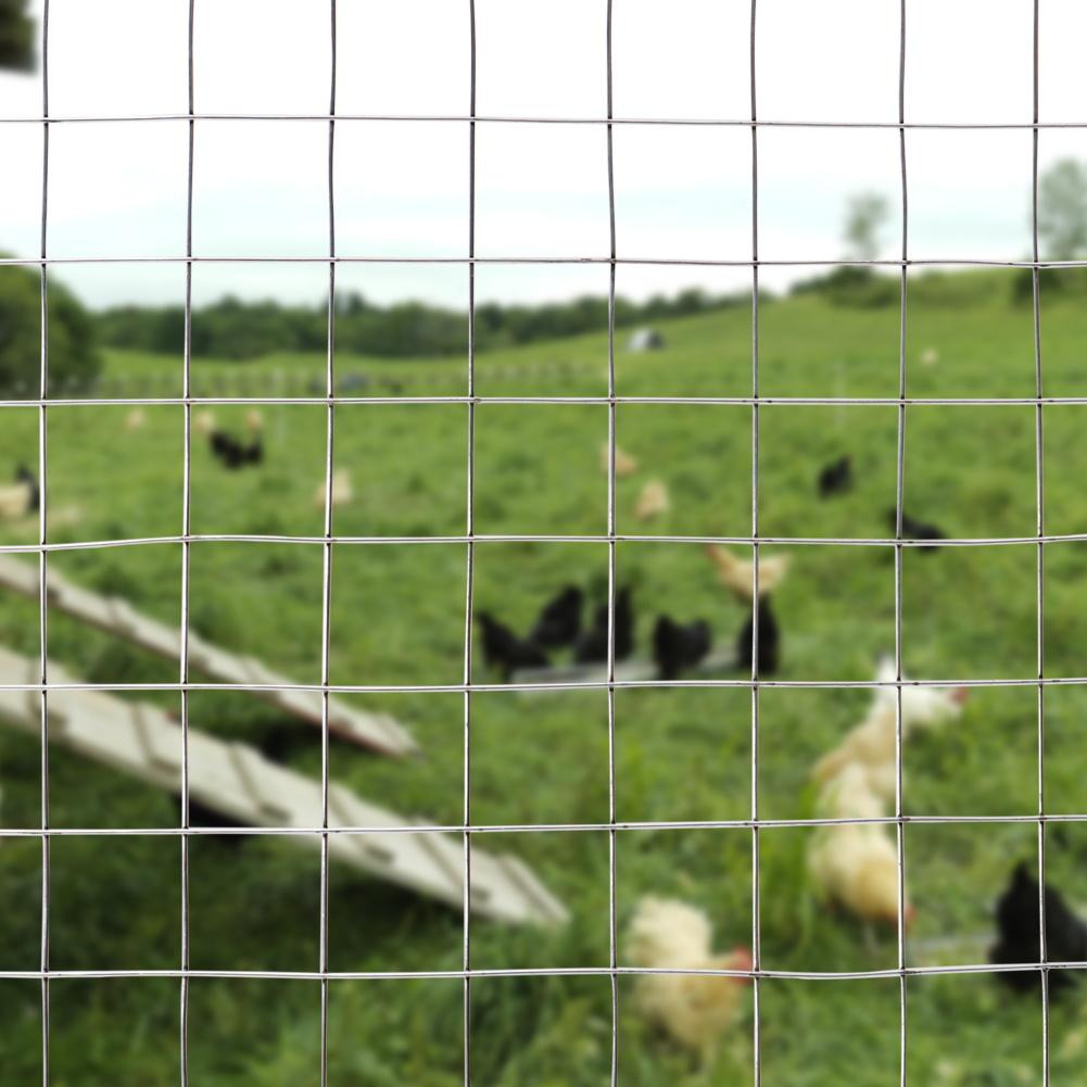 Schweißgitter 15m-30m Läng Gitterzaun Maschendraht Gartenzaun Haustier Wild Zaun
