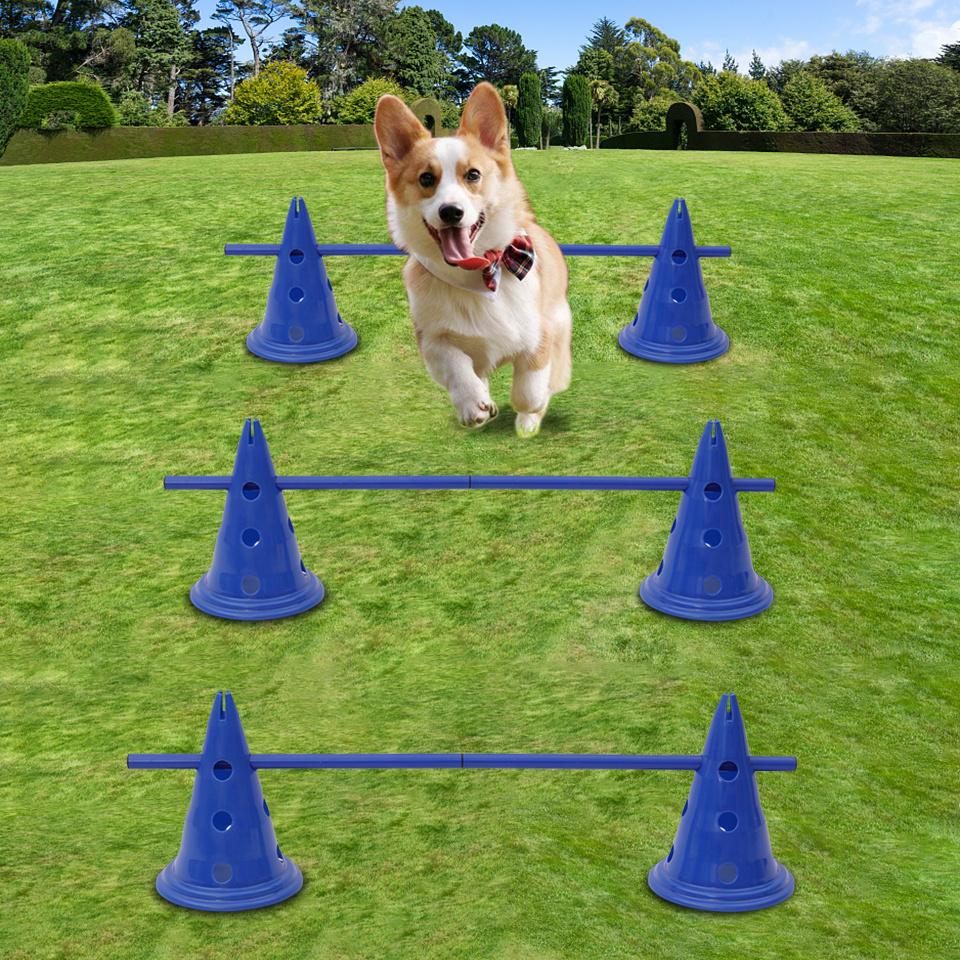 Dog Whistle Ultrasonic Training Crufts Dog Control Pet Handling Keyring