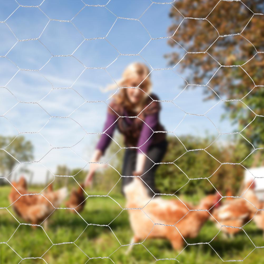 Galvanized Metal Chicken Wire Net Farm Home Use Gardening Mesh Fence 13//25//50 mm